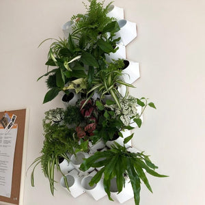Vertical gardens are not exactly news but we feel like they're not as popular as they could be so today we're going to have a look at some beautiful and creative designs and ideas that we think could inspire you to add your own vertical garden to...