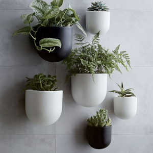 The Best Wall Planters for the Vertical Garden of Your Dream