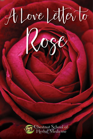 A Love Letter to Rose Written by Ayo Ngozi Drayton