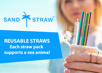 Best Reusable Straws? Why Sand Straw is the King.