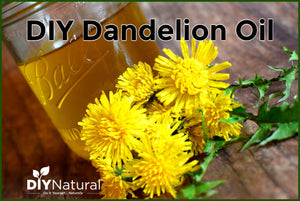 This DIY dandelion oil is excellent for relieving joint pain and sore muscles