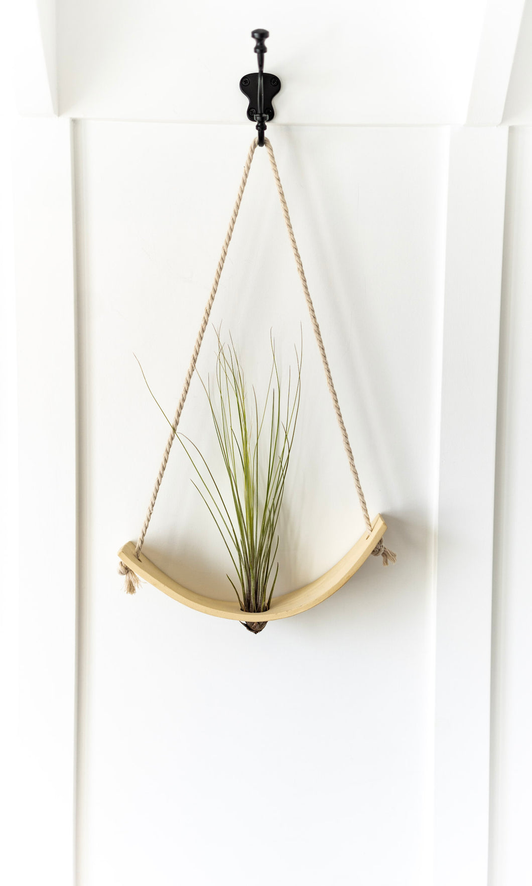 Ceramic Air Plant Holder