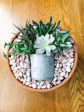 Load image into Gallery viewer, Succulent gardens