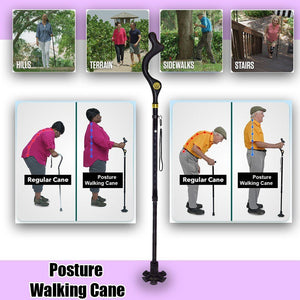 Collapsible Posture Walking Cane