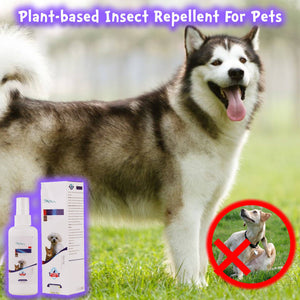 Plant-based Insect Repellent For Pets