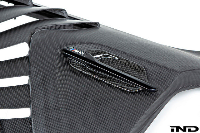 Alpha N F87 M2 Carbon Fender Set  10