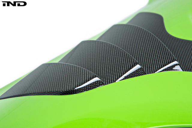 Alpha N F87 M2 Carbon Fender Set  5