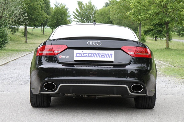 Eisenmann b8 rs5 performance exhaust - iND Distribution