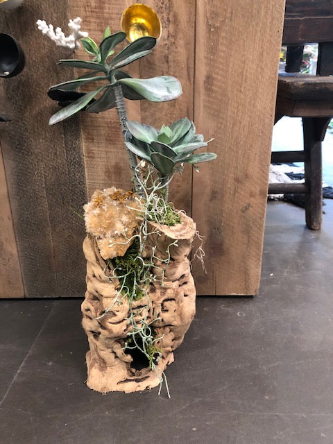 Artificial Cactus in Tumbled Grapewood