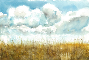Field of Clouds - Claire Gunn