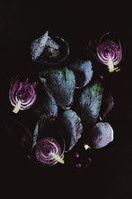 Purple Cabbages III - Claire Gunn