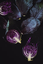Purple Cabbages II - Claire Gunn