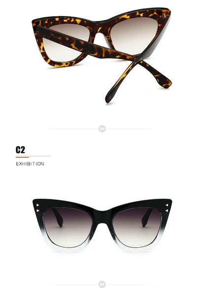 When In Rome Tortoise Shell Cats Eye Ladies Womens Sunglasses