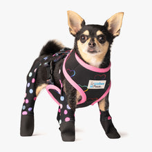 Load image into Gallery viewer, Hearts/Confetti 2-in-1 Reversible Harness