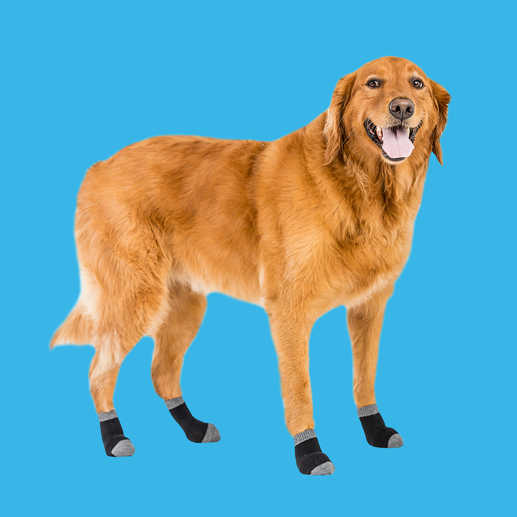 Walkee Paws Liner Socks - for extra paw protection (set of 4 socks)