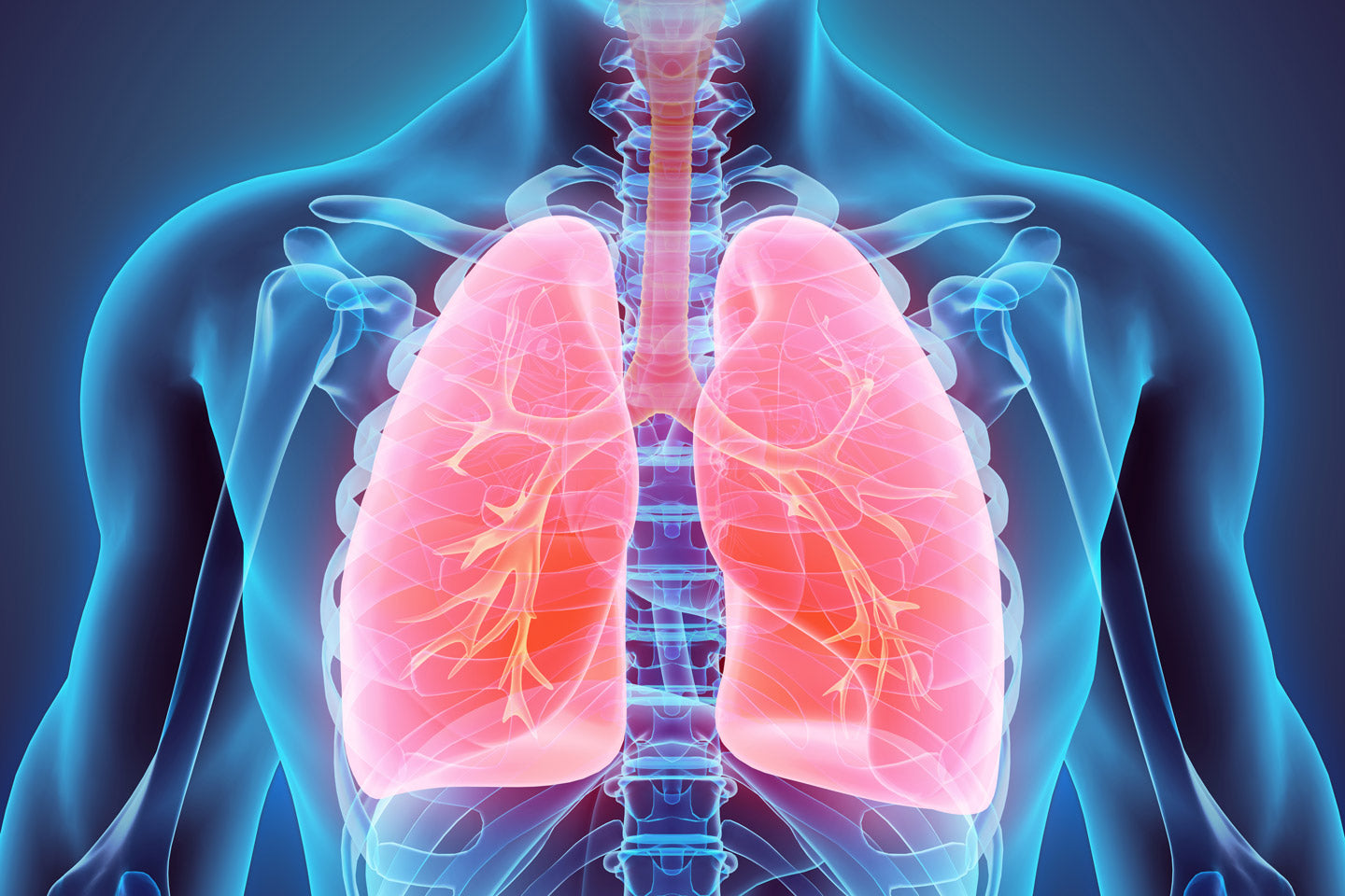Boost and Protect Lung Health