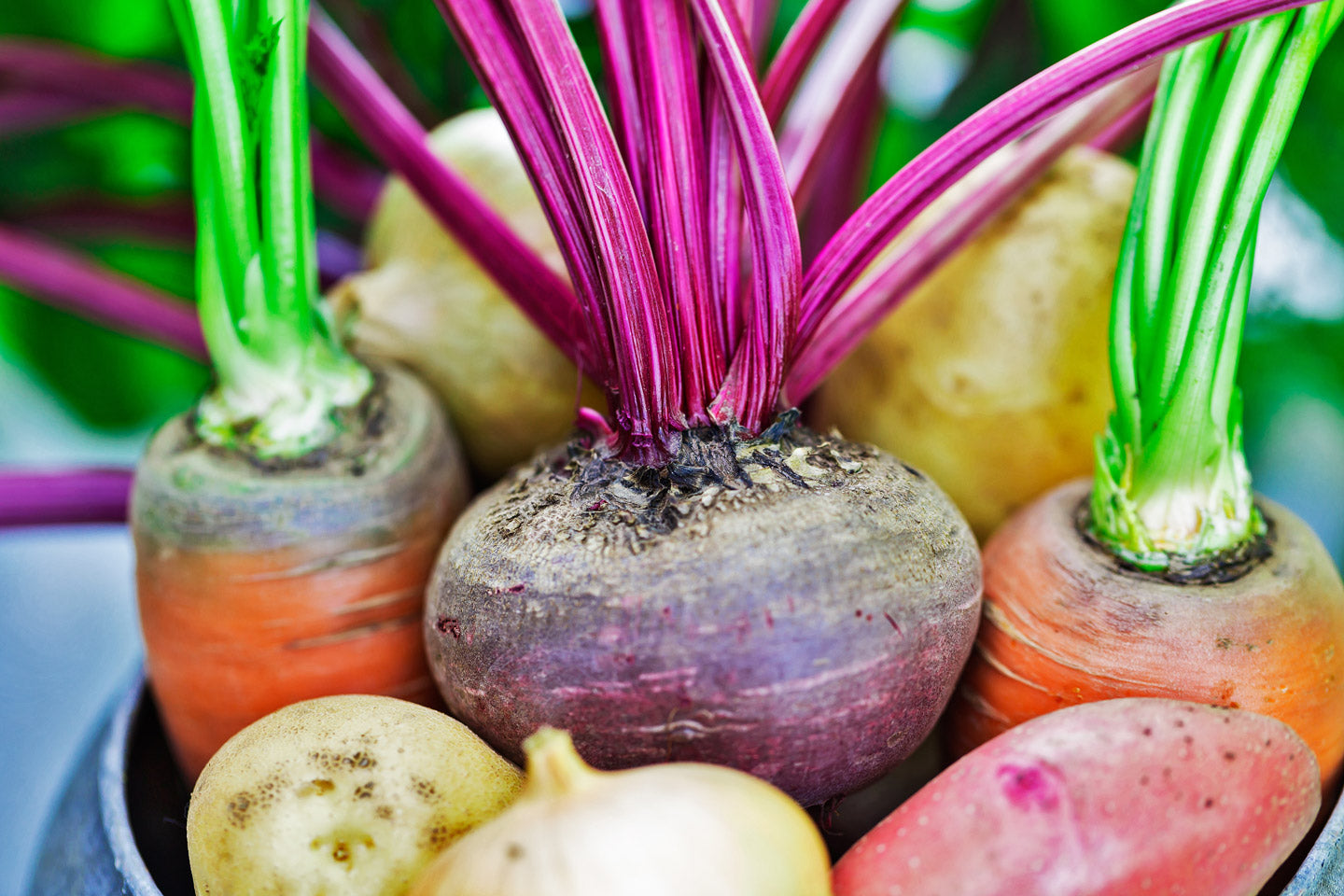 Root Vegetables and Exotic Fruits Month