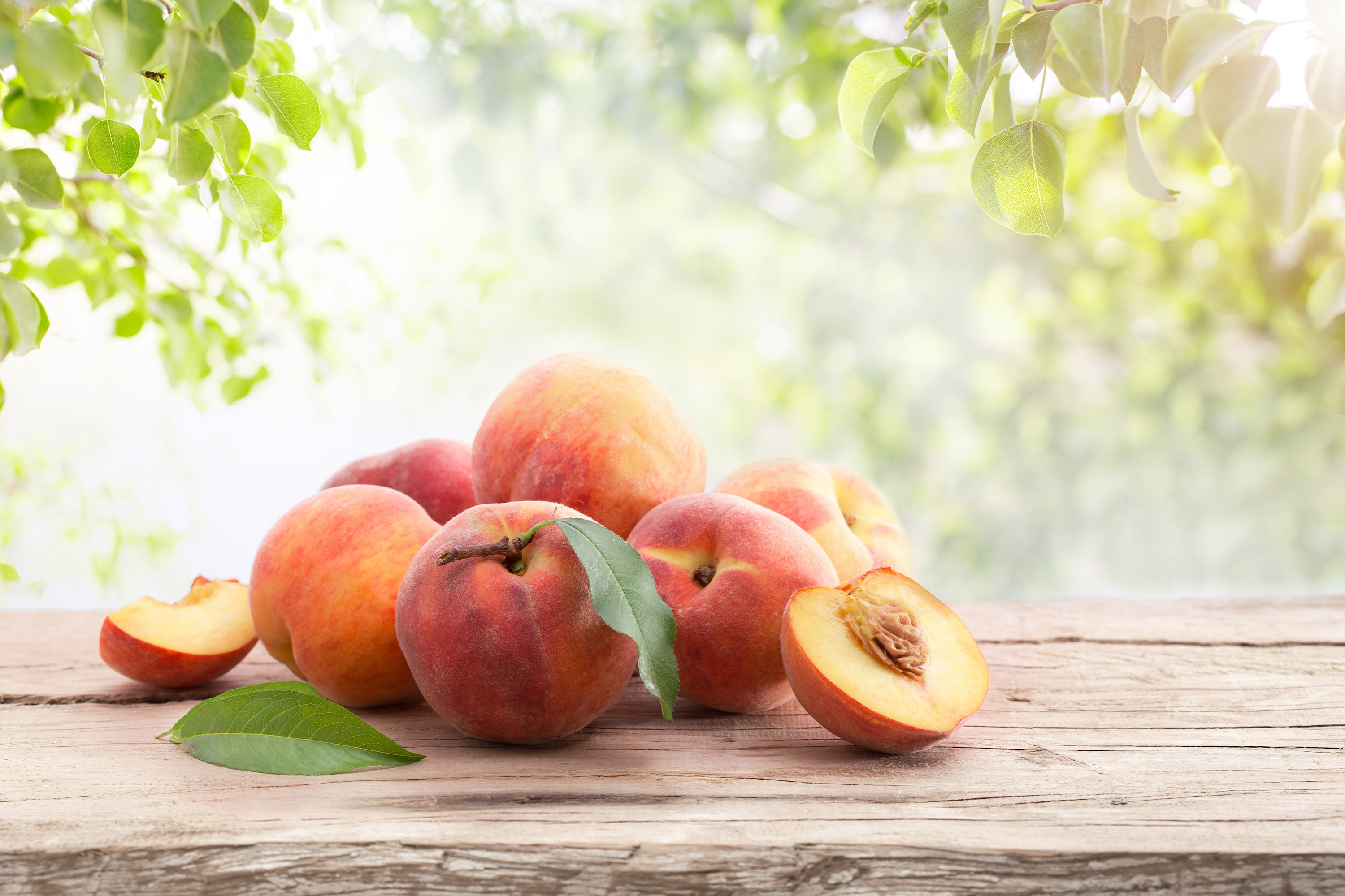 peaches on a wooden plank under a tree on a sunny day
