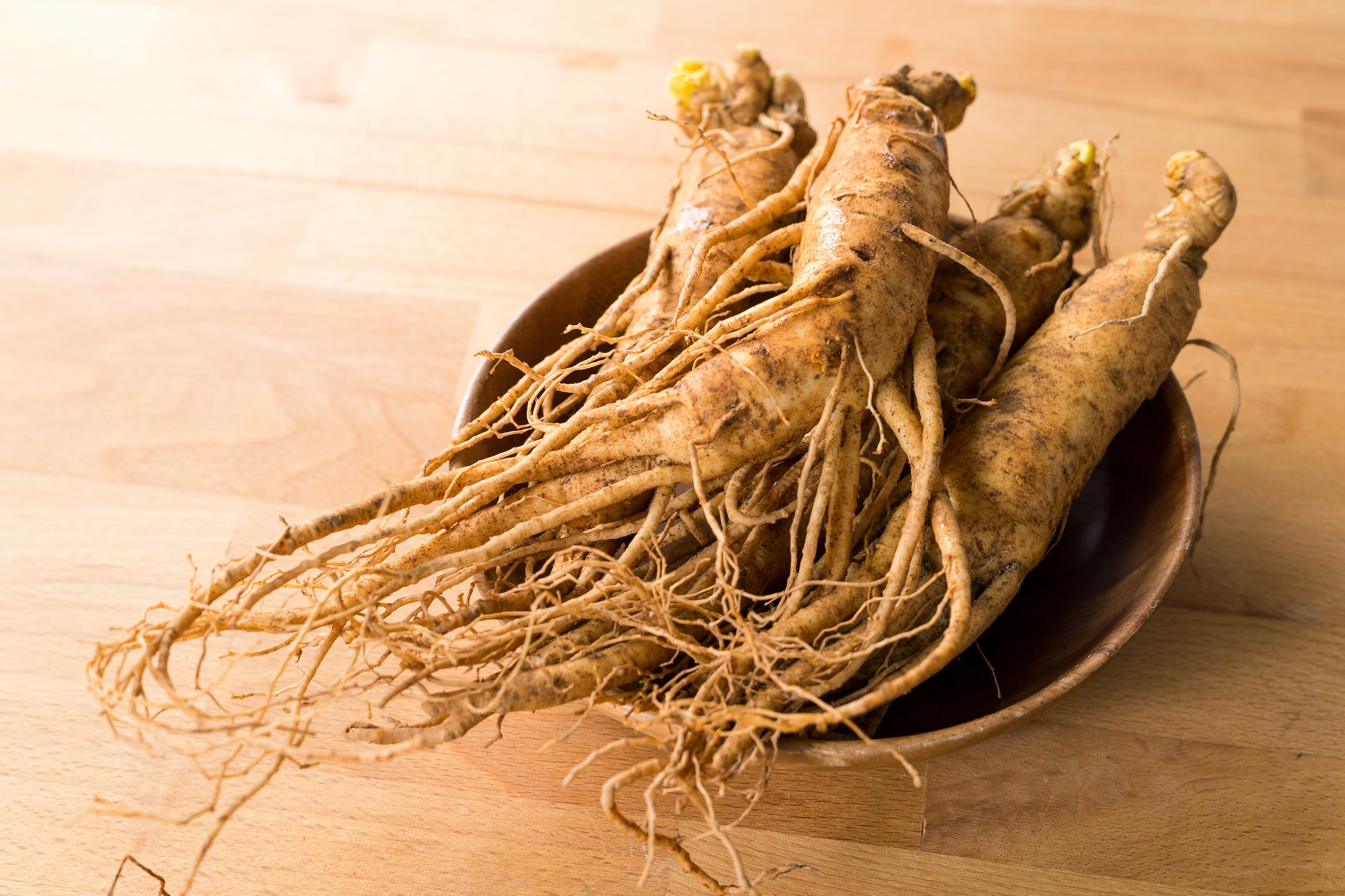 Asian ginseng root in bowl on table