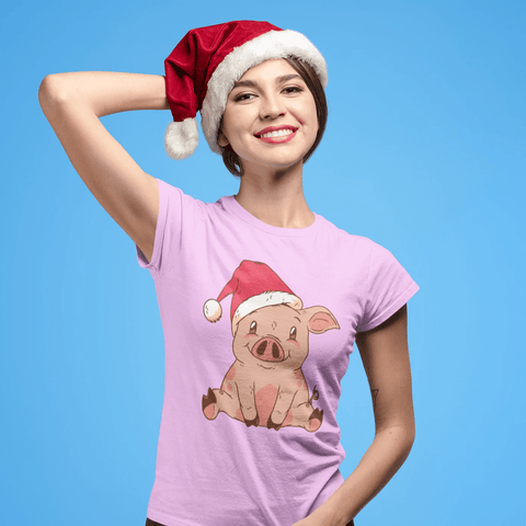 Christmas Hat Pig T-shirt For Women Clothing Turtle Dojo