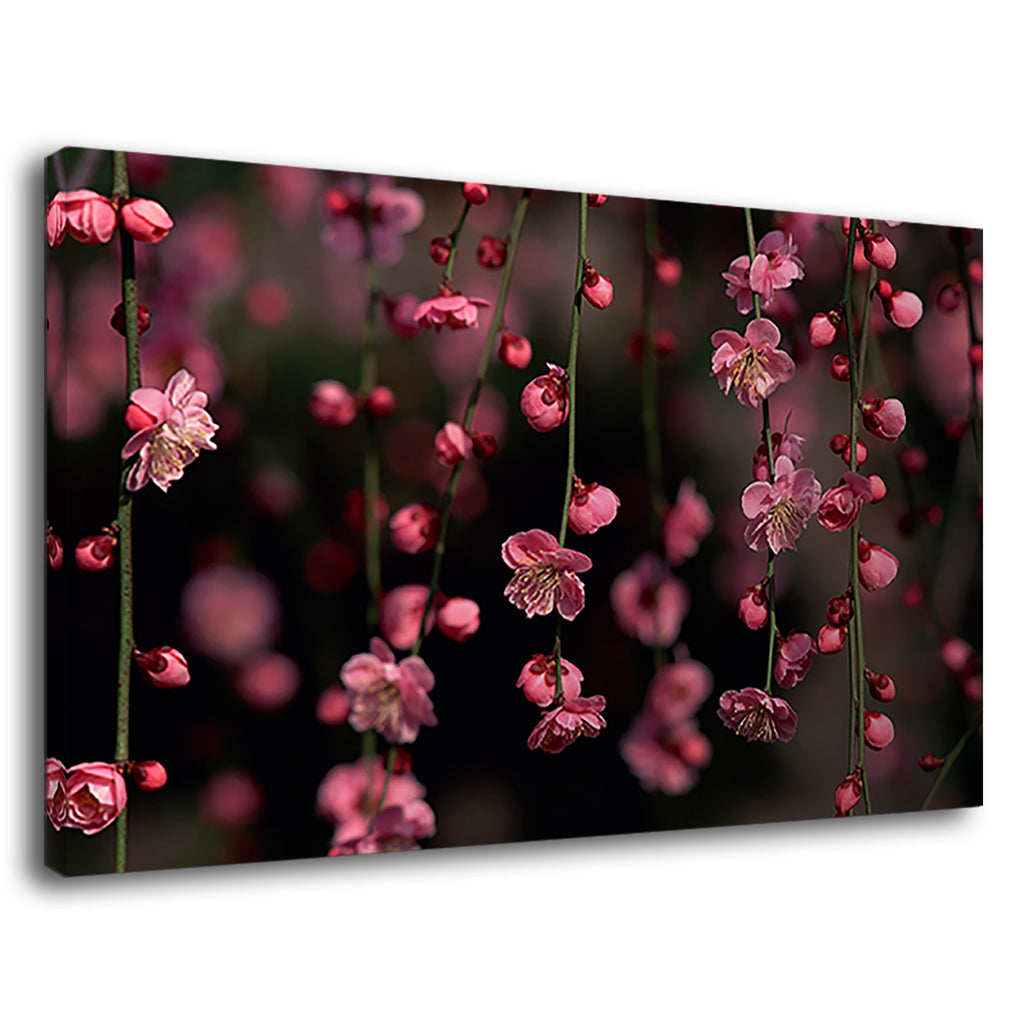 Maiyaca Hanging Flower Pink Cherryblossom Earth