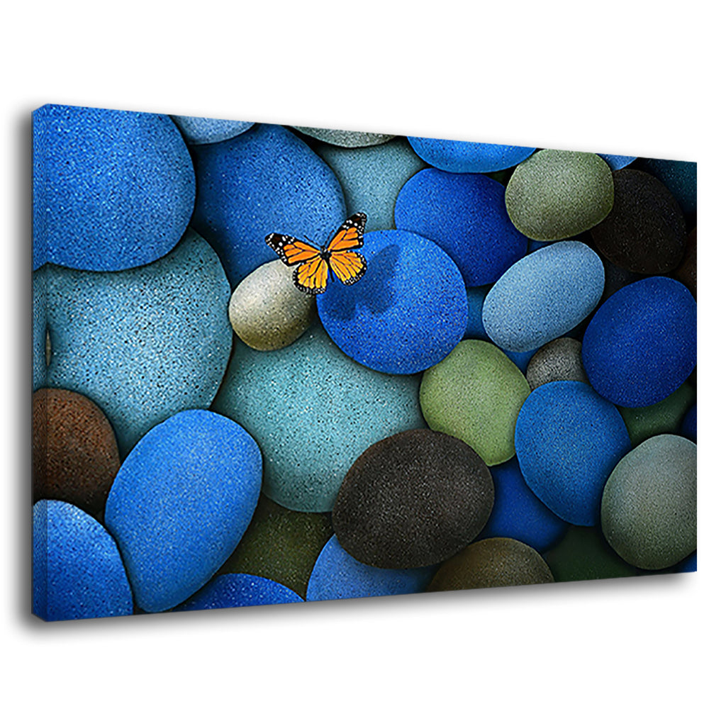 Lonely Monarch Butterfly On The Blue Pebbles