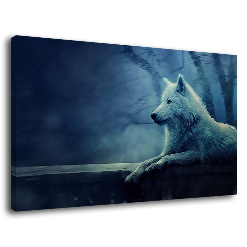 Beautiful White Wolf Sitting Alone In Foggy Forest