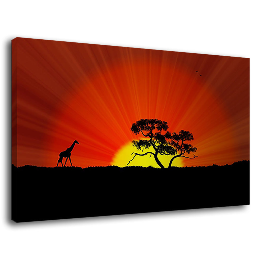 Nature Giraffe Landscapes Sunsets Wild Animal