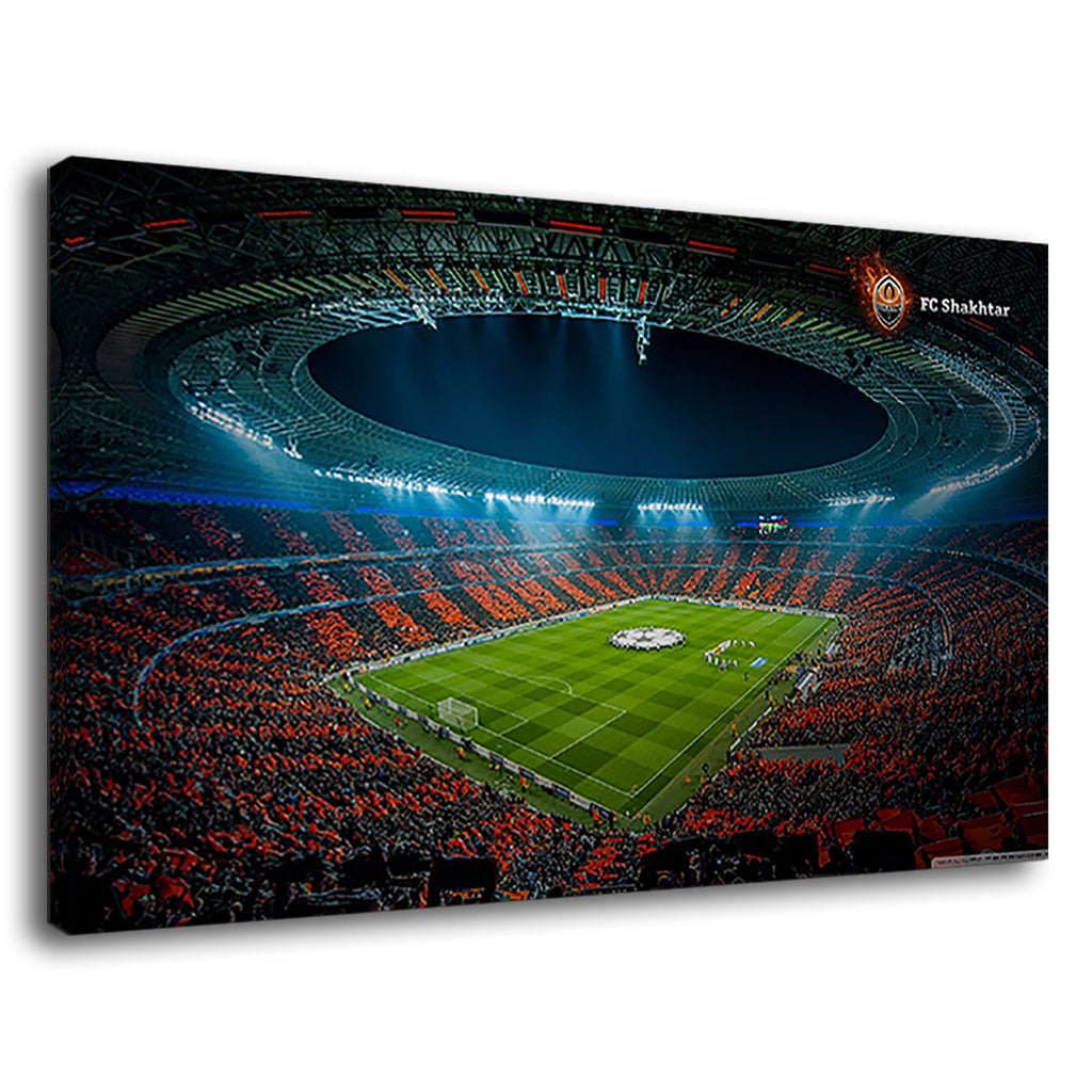 Donbass Arena Of Ukraine For Drawing Room