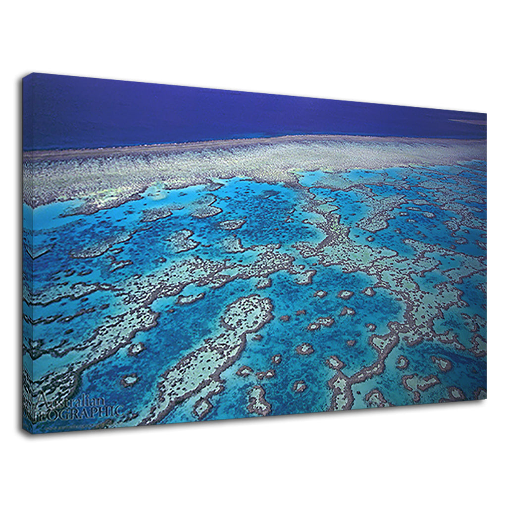 Beautiful Great Barrier Reef For Drawing Room