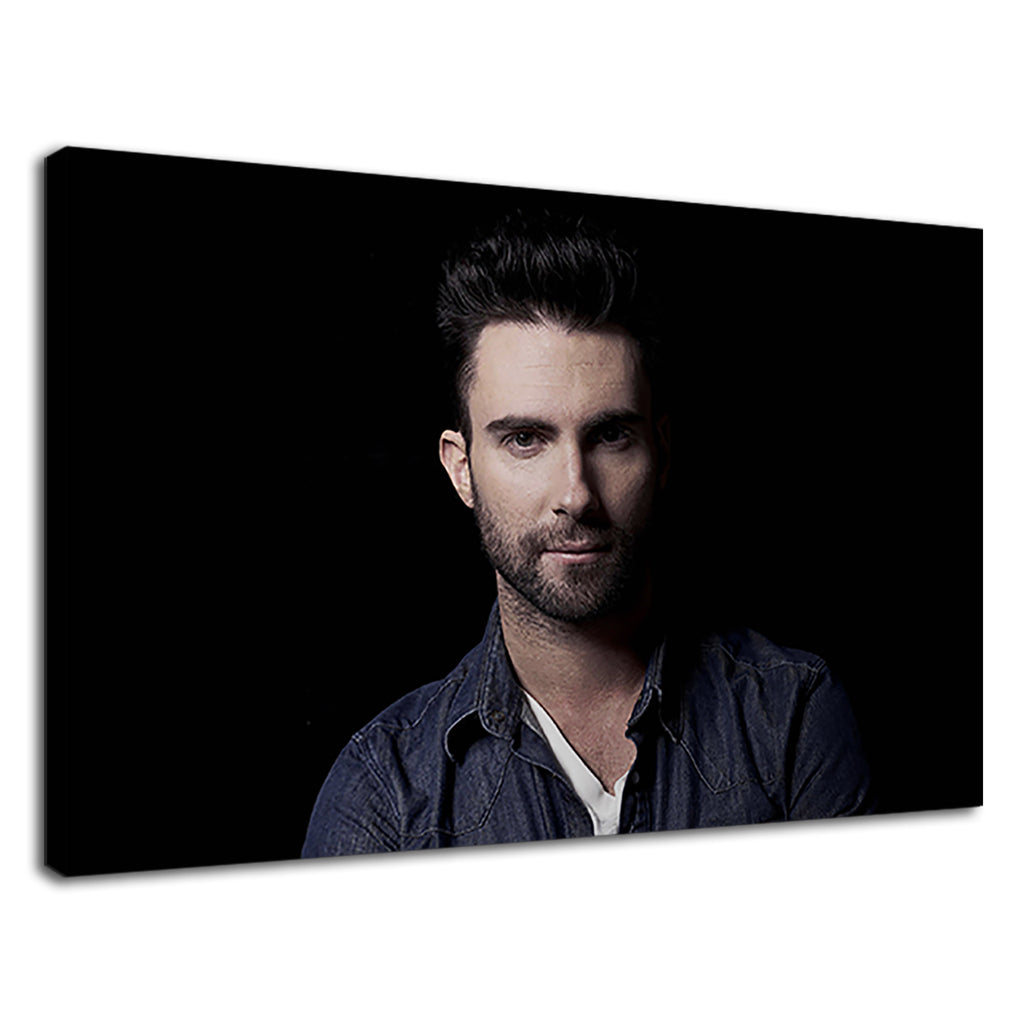 Portrait Of Pop Star Adam Levine From Maroon 5