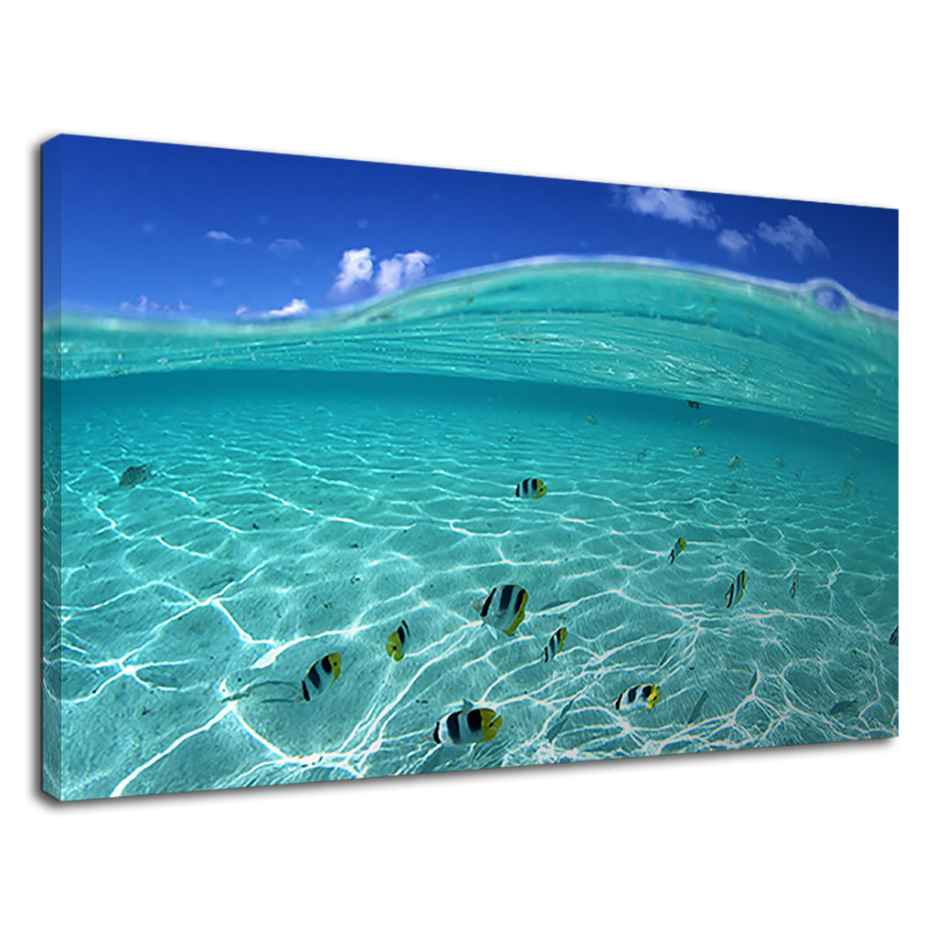 Tropical Fish In Clear Ocean Water Waves