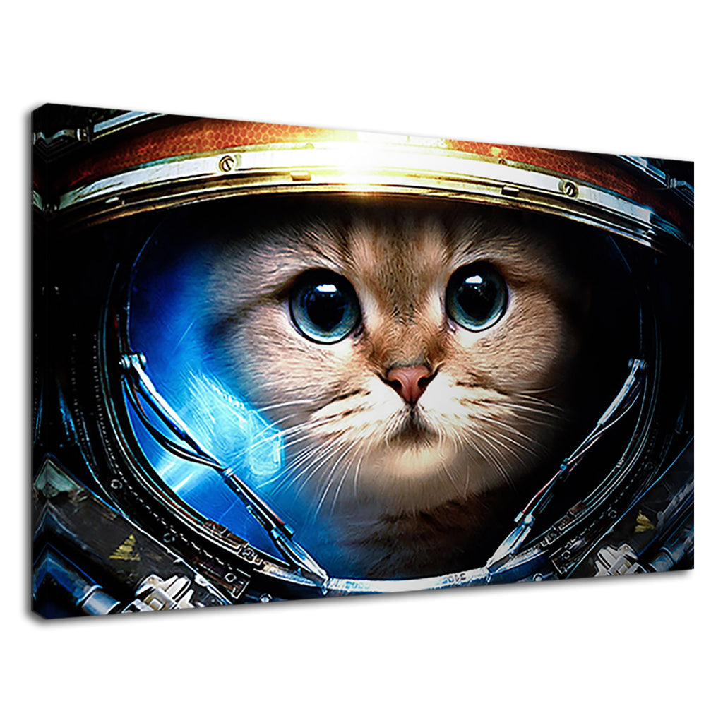 Cat In Space Astonaut Nasa Cat Lover Cute Explorer