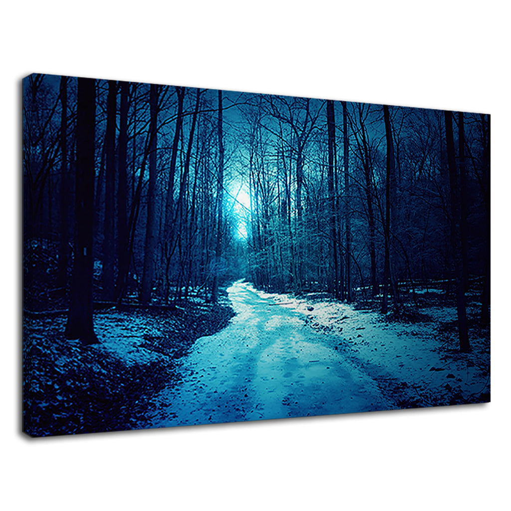 Blue Forest Snow Covered Track Trees Moon Wood