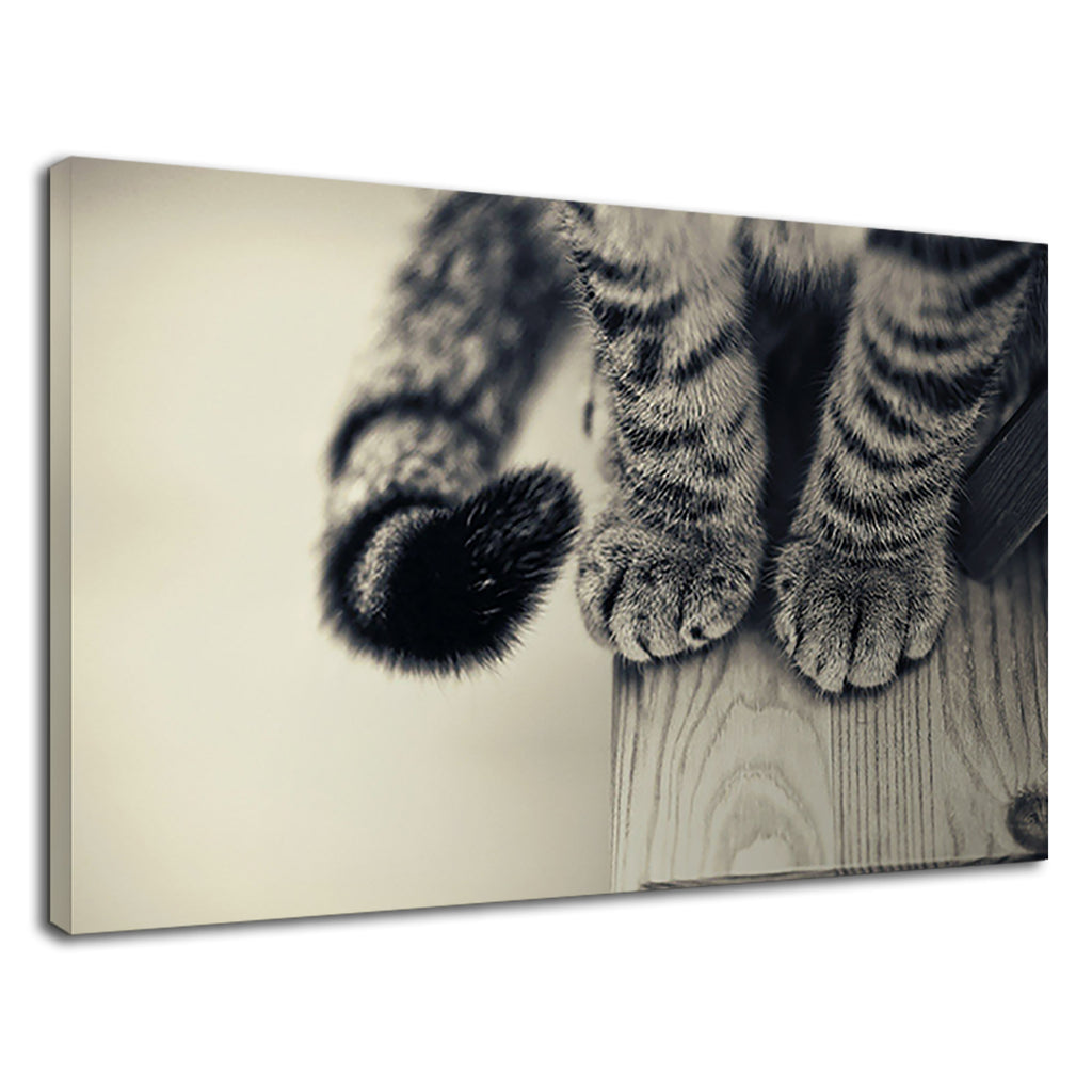 Cute Stripey Cat Paws On A Table Sepia Black White
