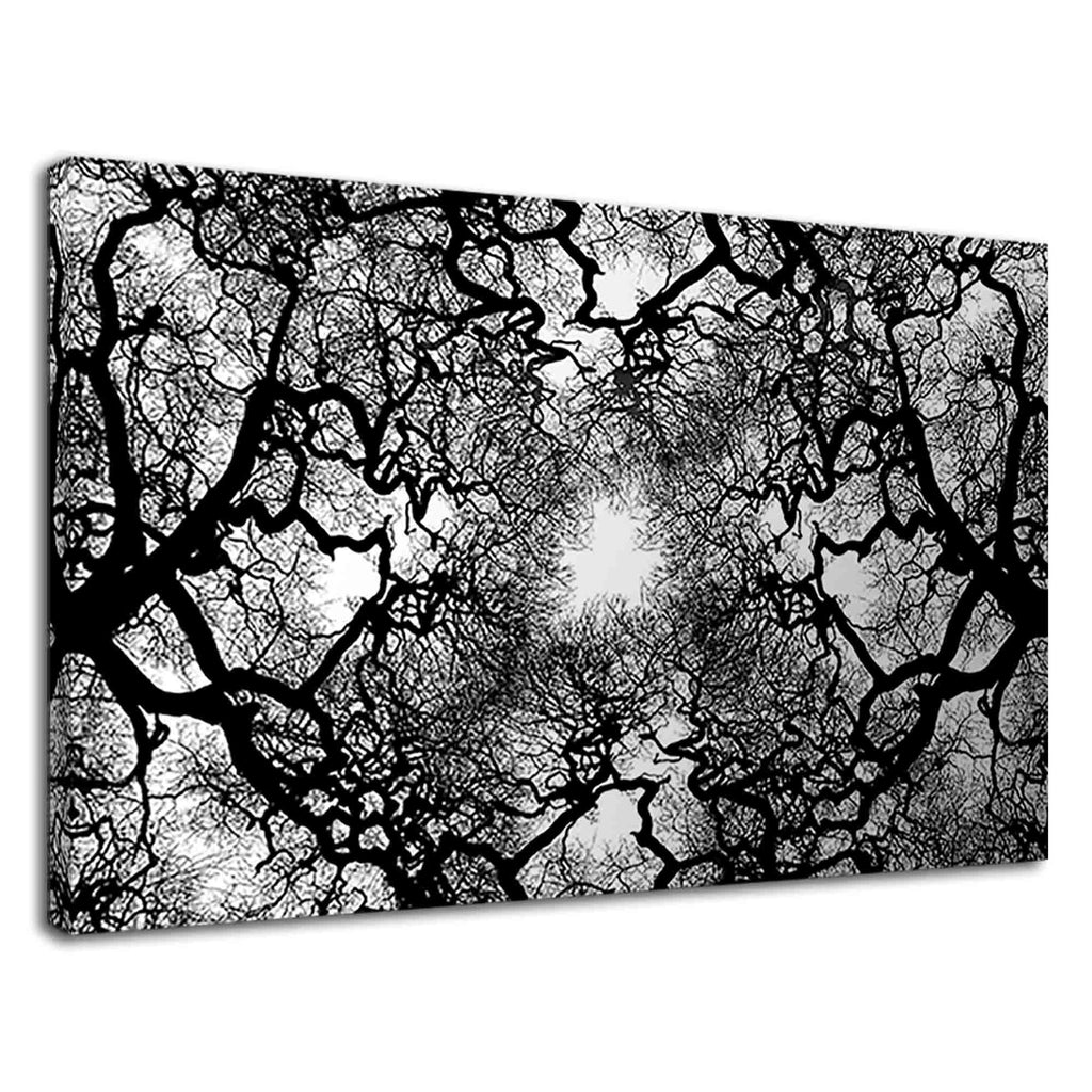 Branches Of Tree Without Leaves Abstract Artwork