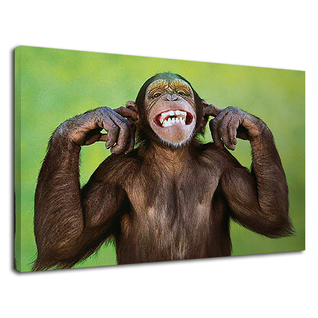 Cute Wise Monkey Hear No Evil 3 Wise Monkies