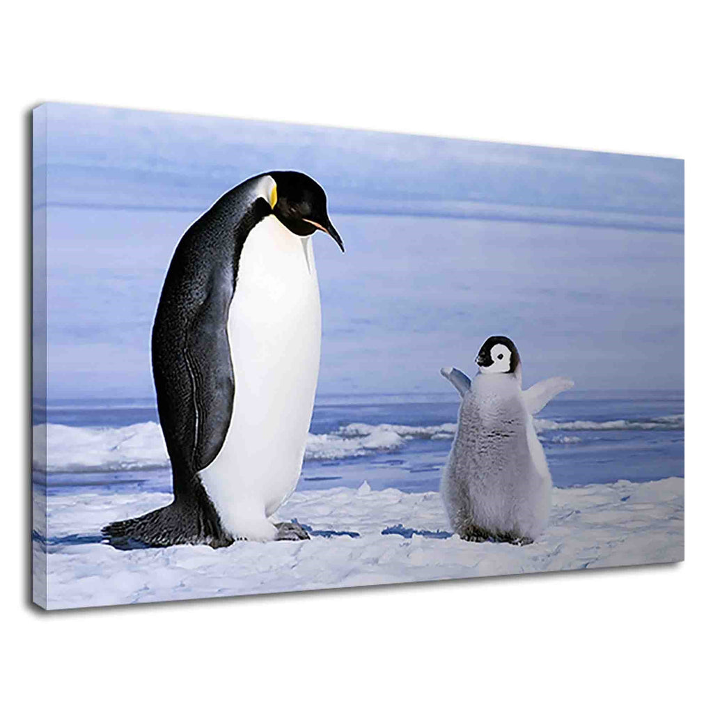 Cute Baby Penguin With His Mother For Kids Bedroom