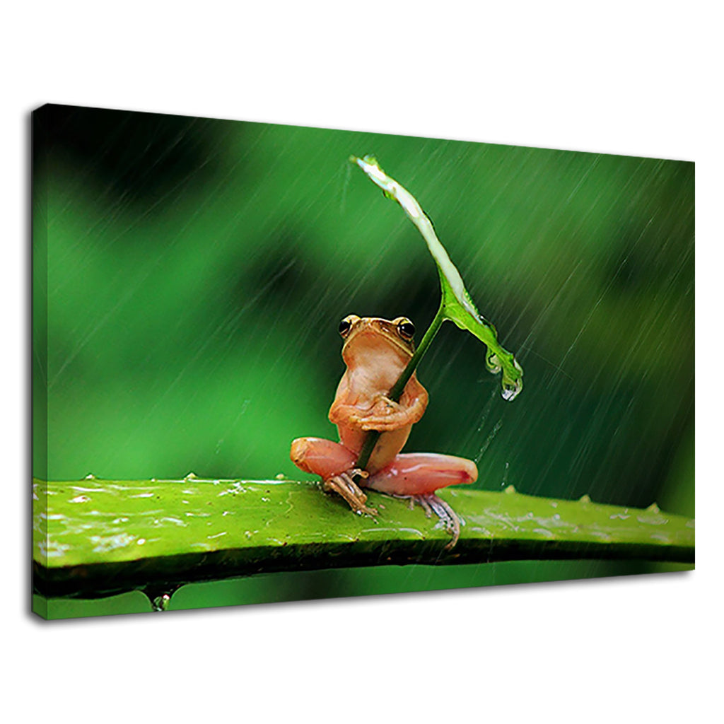 Frog Using Leaf As Umbrella For Bathroom