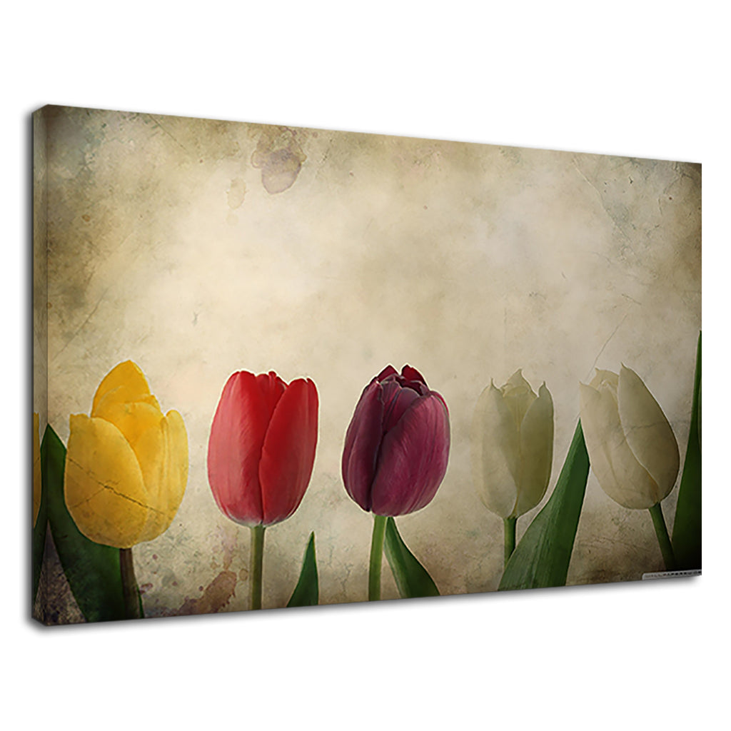 Colourful Tulips Digital Artwork For Living Room
