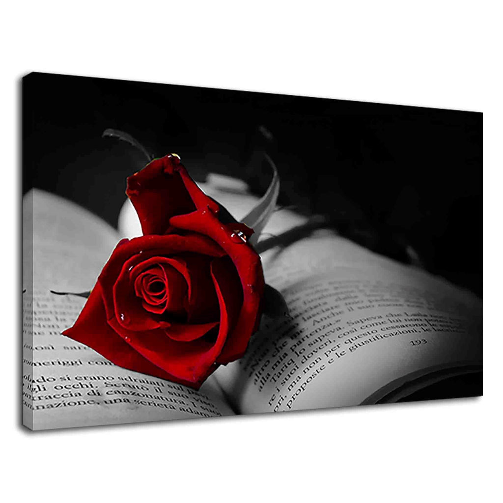 Gothic Red Rose On A Book For Drawing Room