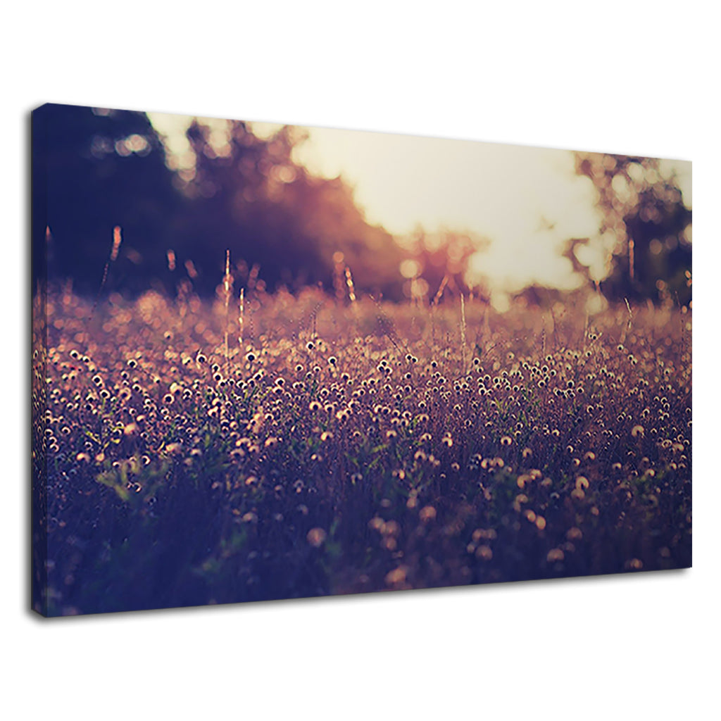 Macro Vintage Sepia Meadow Beautiful Home Art