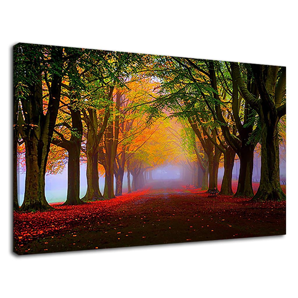 Autumn Leaves Foggy Autumn Landscape English