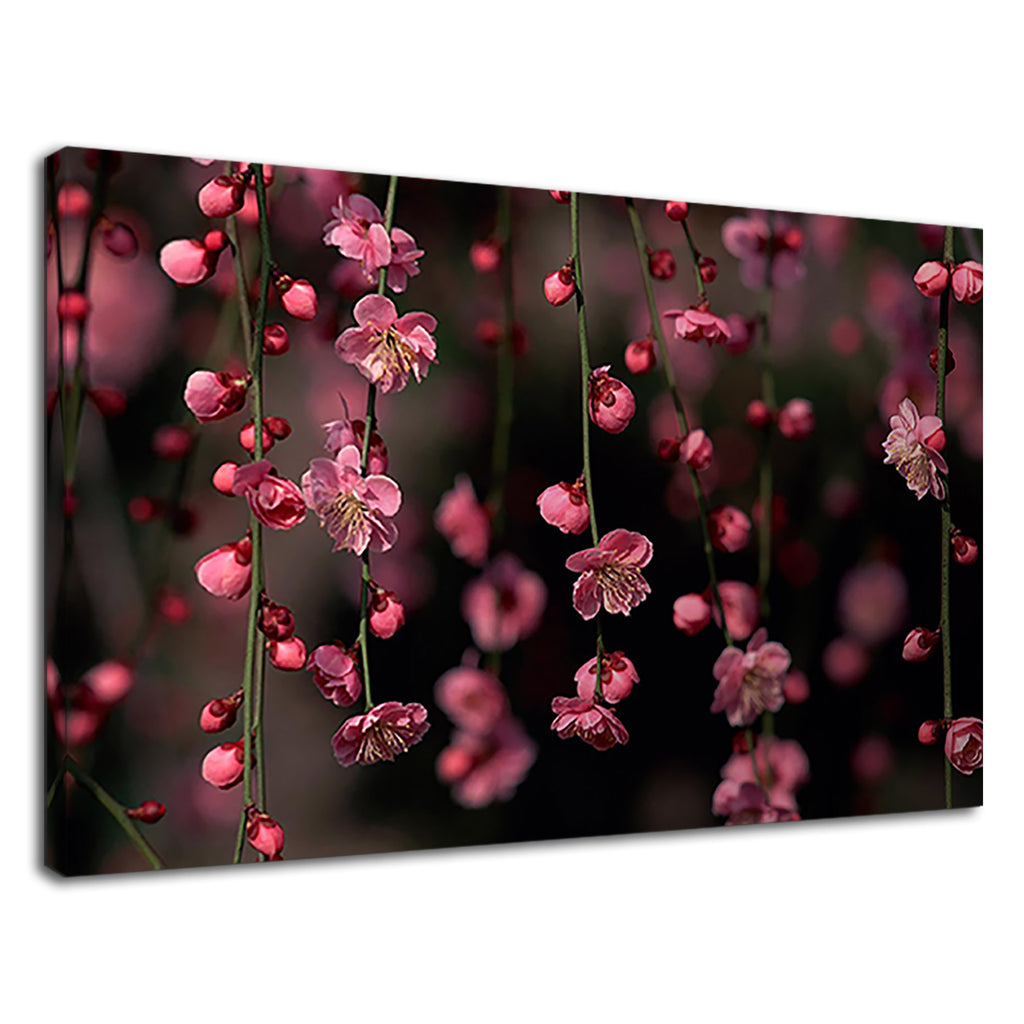 Beautiful Pink Spring Flowers For Living Room