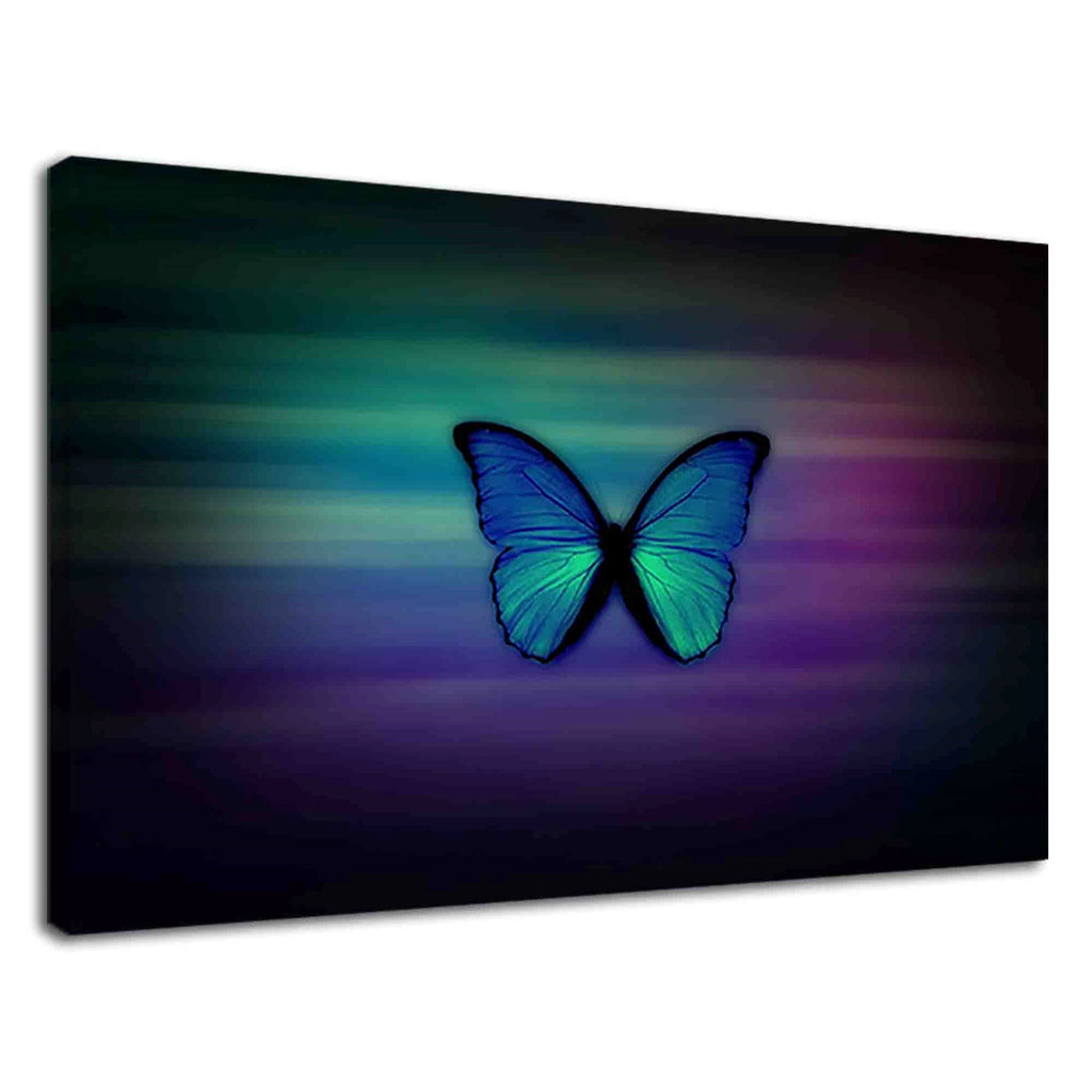 Lovely Butterfly On Vibrant Blue For Drawing Room