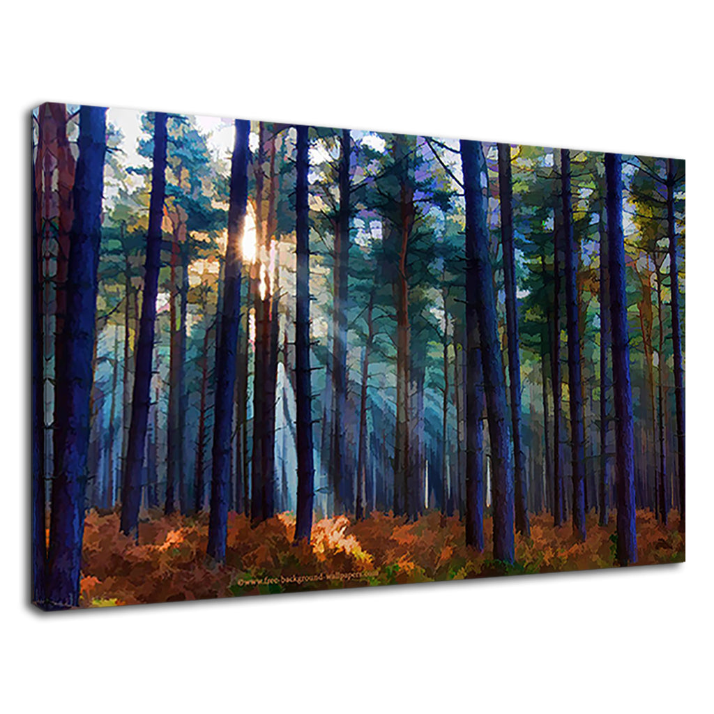 Digital Woods Painting Sunlight Through The Trees