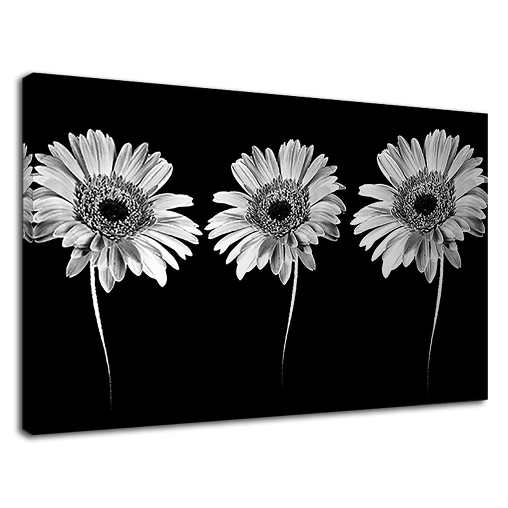 Black & White Triple Daisies Daisy Floral Kitchen