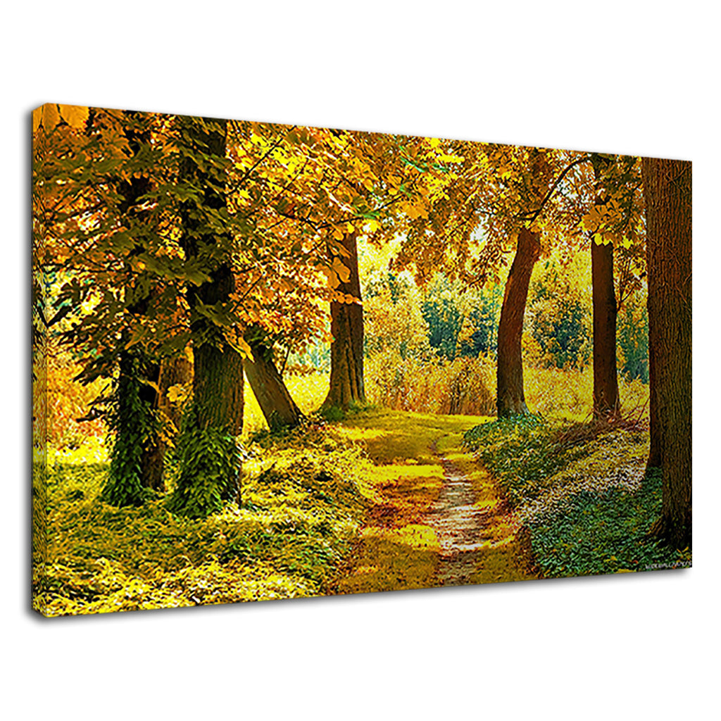 Yellow Leaves Stunning Autumn Trees Wood Landscape