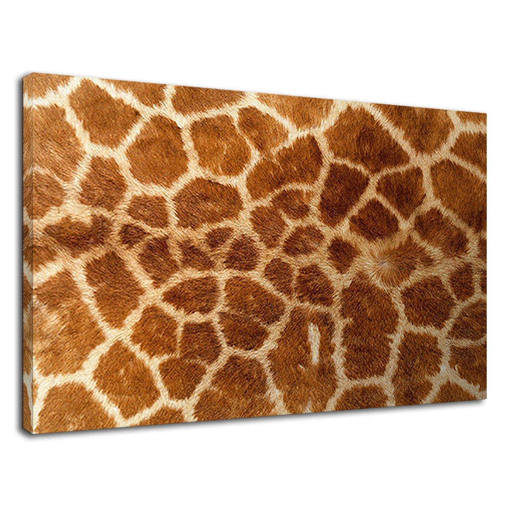 Real Giraffe Fur Pattern Wildlife Safari Skin