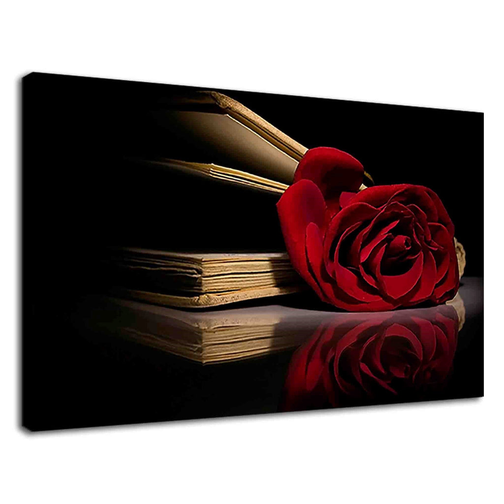 Red Rose Inside Of A Book Still Life Photography